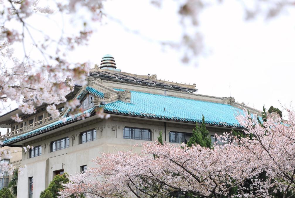 中国最美大学排名,武汉大学的樱花城堡宿舍亮了,景点也能当宿舍