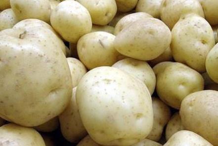 世界上最贵的土豆,1公斤卖到4000元人民币,是当地特产