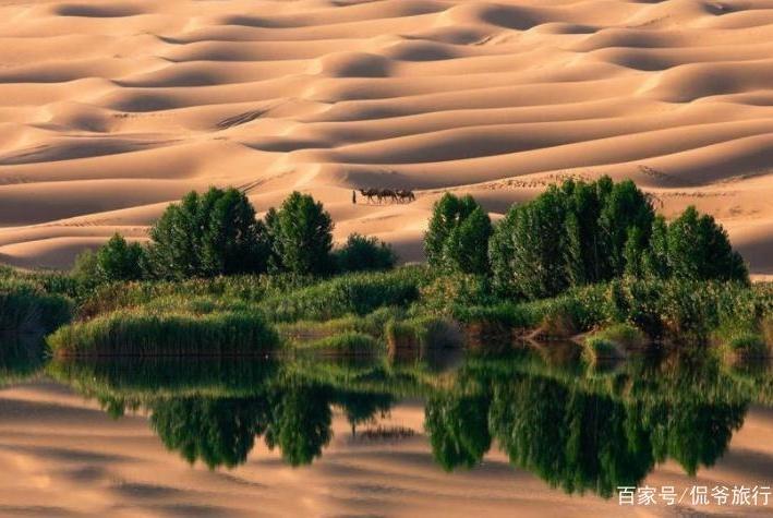 """前人栽树后人乘凉,我国的""""沙漠绿洲"""",多年苦心却毁于""""它"""""""