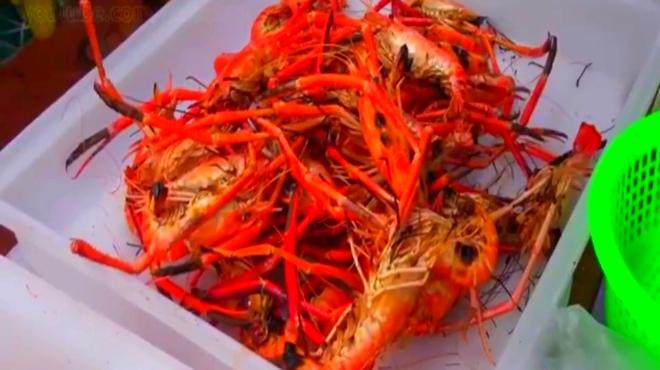大龙虾,大螃蟹,烤大虾,扇贝,海鱼