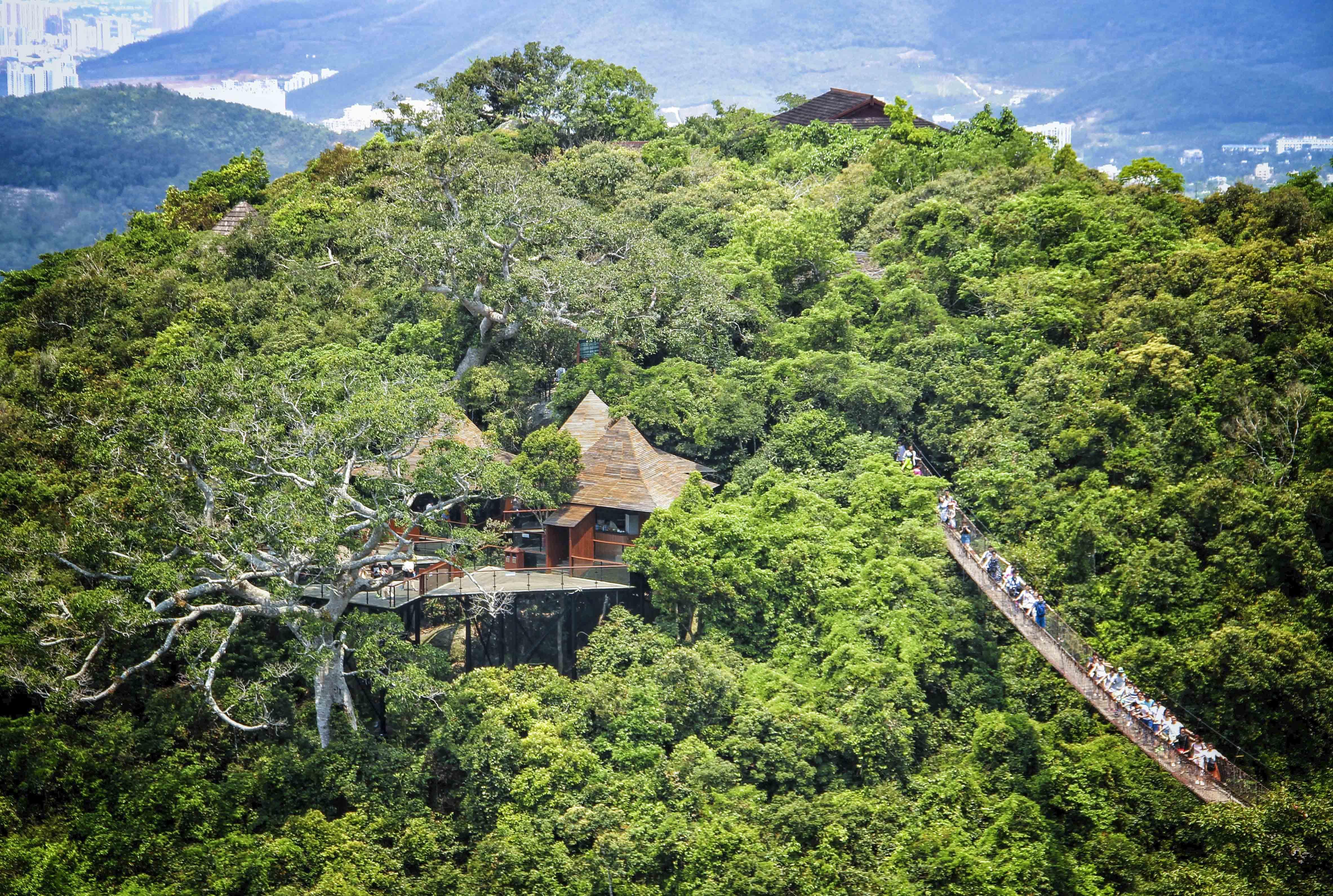 三亚的热门景点很多,最著名的有《非诚勿扰2》取景地亚龙湾热带森林公图片