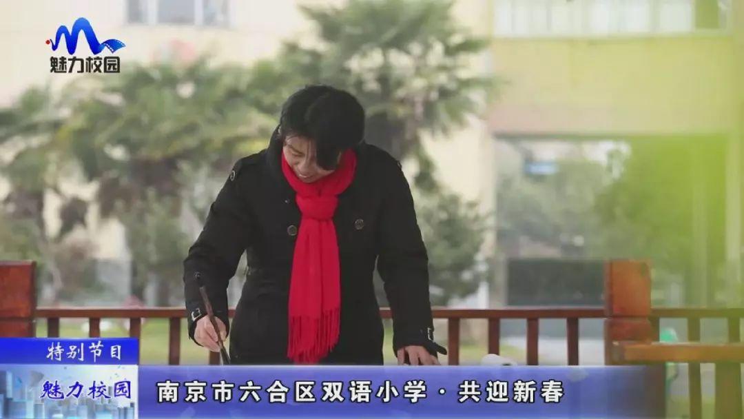 [特别节目]南京市六合区双语小学共迎新春小学生表扬搞图片