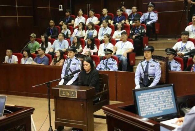 杭州保姆纵火案被害人亲属林生斌与绿城达成调解 撤回起诉