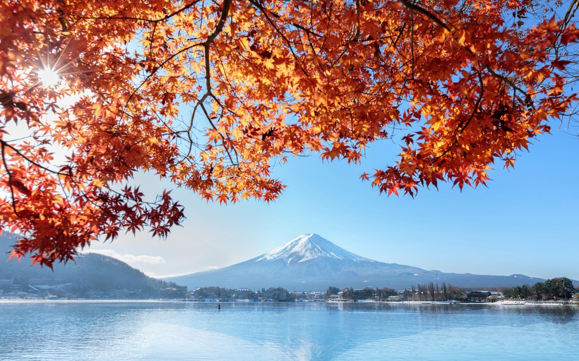 风光摄影:日本富士山秋天风景,红枫和雪山景色太美