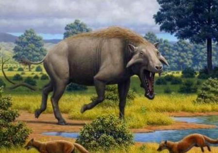 曾经生存在中国大陆的5种史前动物,图三体重相当于4只