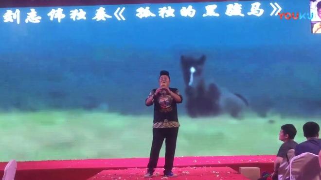 《孤独的黑骏马》吉尼斯纪录保持者,星光大道冠军刘志伟葫芦丝独奏