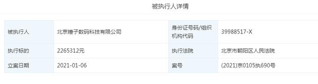 北京锤子数码科技再成被执行人 执行标的226万元
