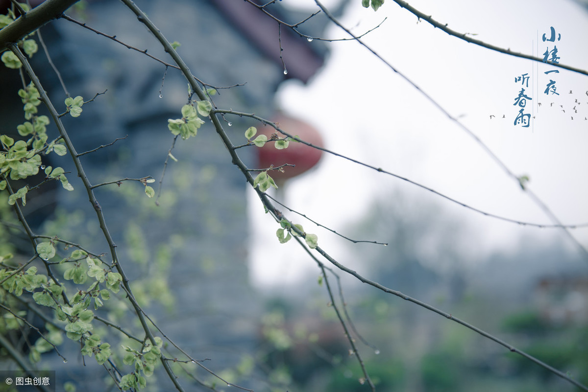 """农村俗语""""春分有雨到清明,清明下雨无路行""""蕴含了古人"""