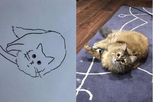 主人送给猫咪简笔画,最后那只还能是猫么,灵魂都给画出来了
