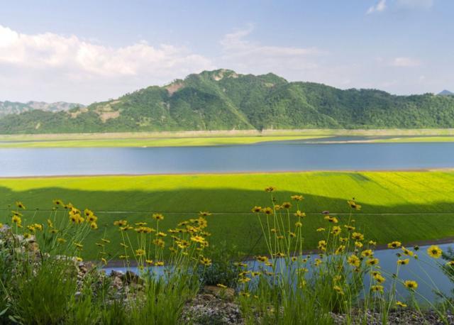 王绩最著名的一首诗,描写宁静和谐的田园风光,抒发了闲适之情