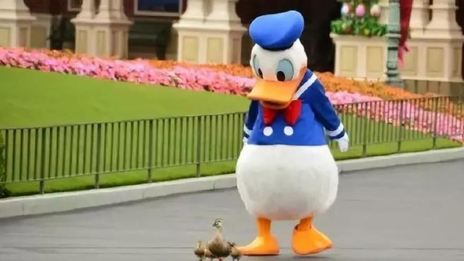 谁不想去迪士尼做鸭?!