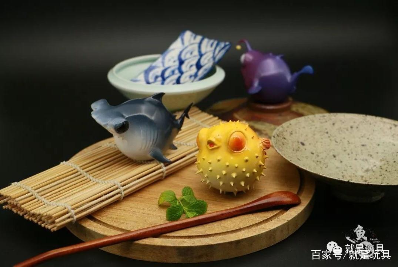 鱼丸新鲜上市!河豚、锤头鲨和灯笼鱼你要哪个?