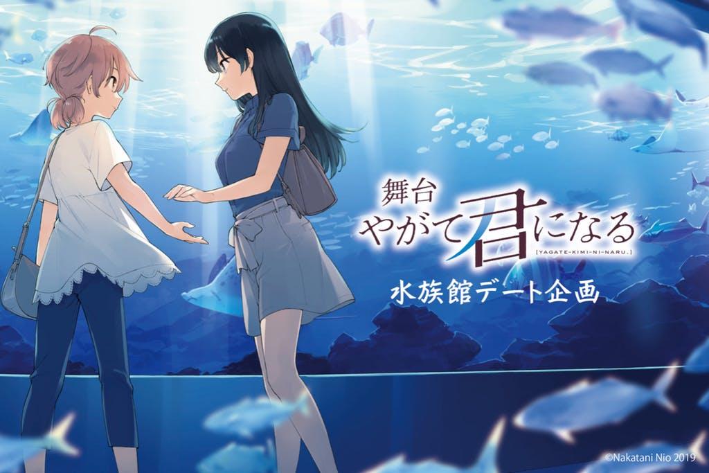 舞台剧《终将成为你》水族馆约会企划募资破700万日元 终将成为你 ACG资讯