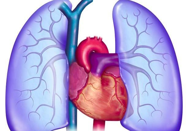 年过50,若还想养肺,除了进行运动锻炼,还需要坚持做这些事!