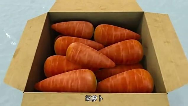 猪猪侠之超星萌宠 第2季 第16集