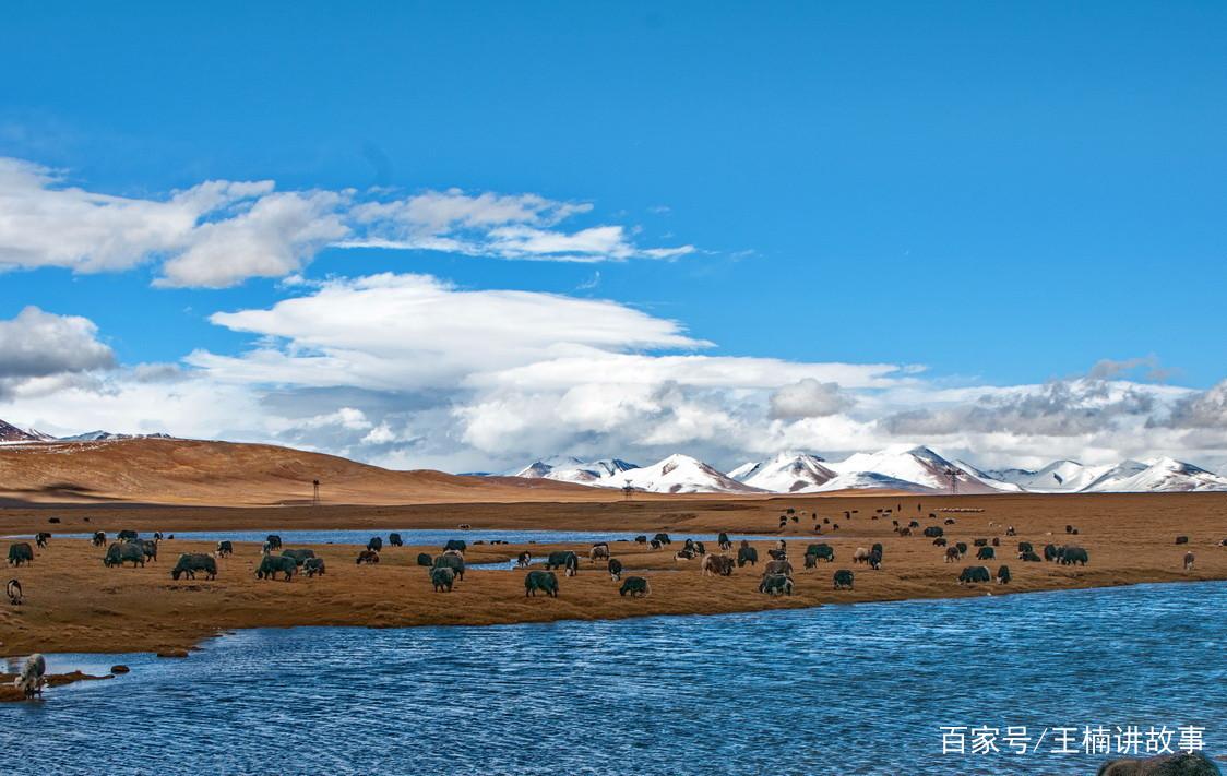 可可西里的风景如画,蓝天下的土地,气势磅礴