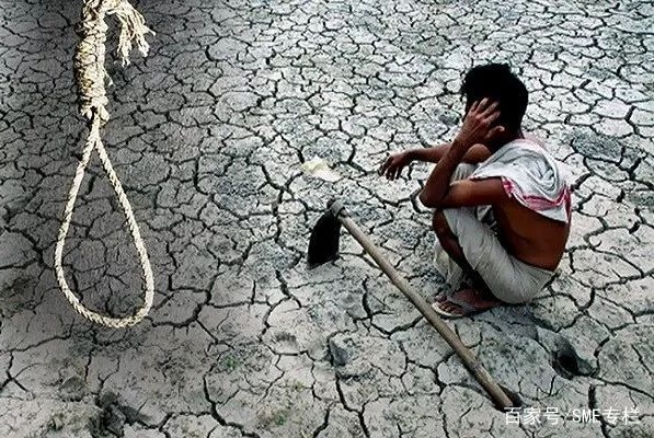 """印度""""自杀村""""3月死80人,其背后的神秘力量可能是农药"""