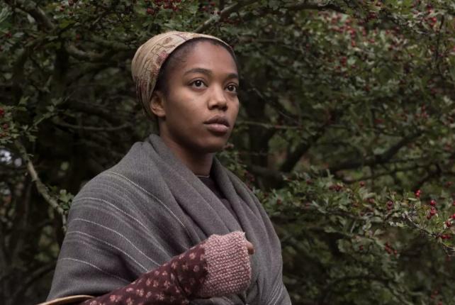 《麦克白夫人》,村姑嫁入豪门,为了情夫连杀三人,成为蛇蝎少妇