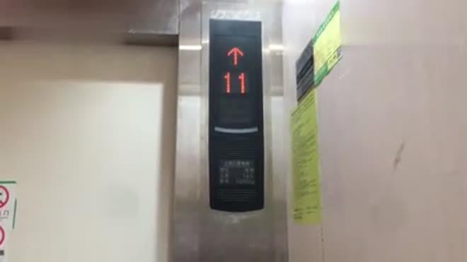 「颠簸」上海同济虹口园(原石油大厦)上海三菱电梯