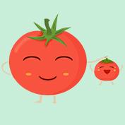 西红柿妈妈