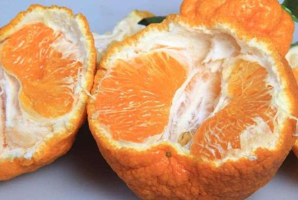 """看到这4种""""丑橘""""谨慎买,不仅水份少还不新鲜,纯属白花钱!"""