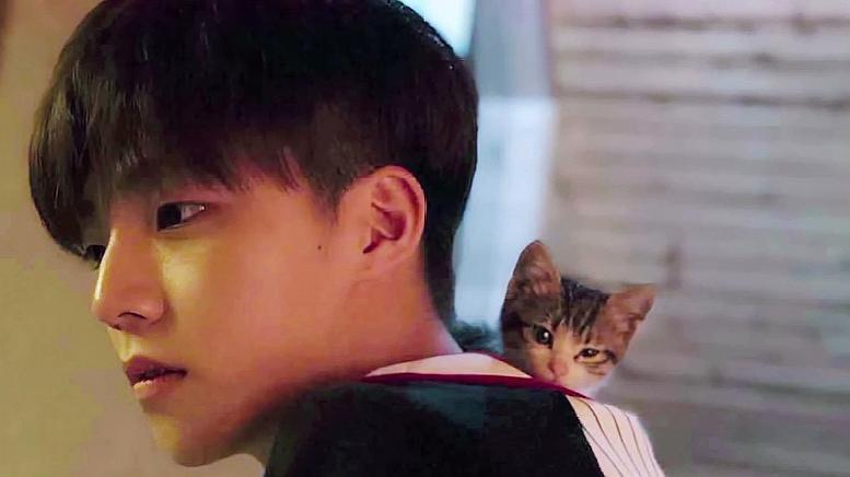 综艺:陈立农拍照帅出动漫男的既视感,网友:糟了是心动的感觉!
