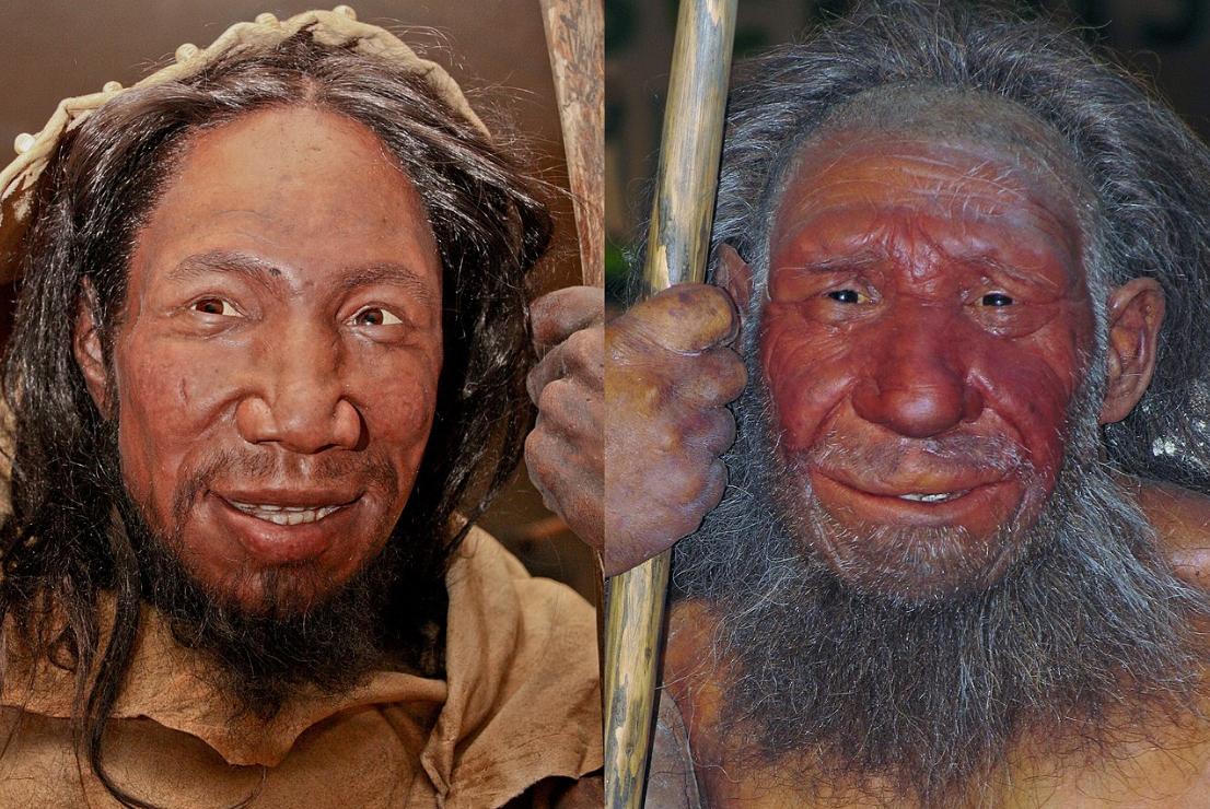 假如尼安德特人没有灭绝,他们会成为少数民族还是被关进动物园?