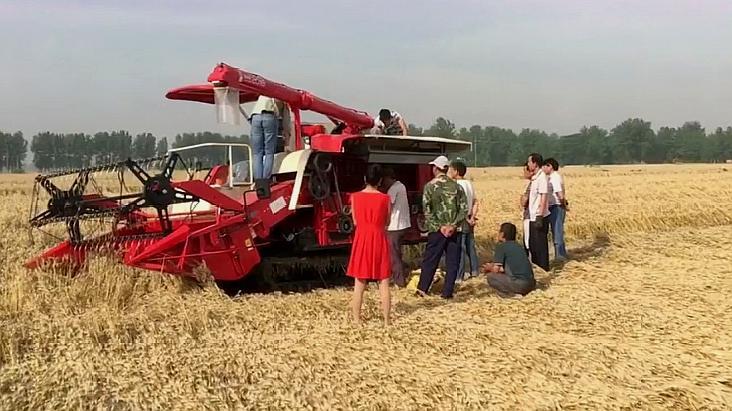 农村小伙新买收割机,刚下地就出问题,引起众人围观帮忙!