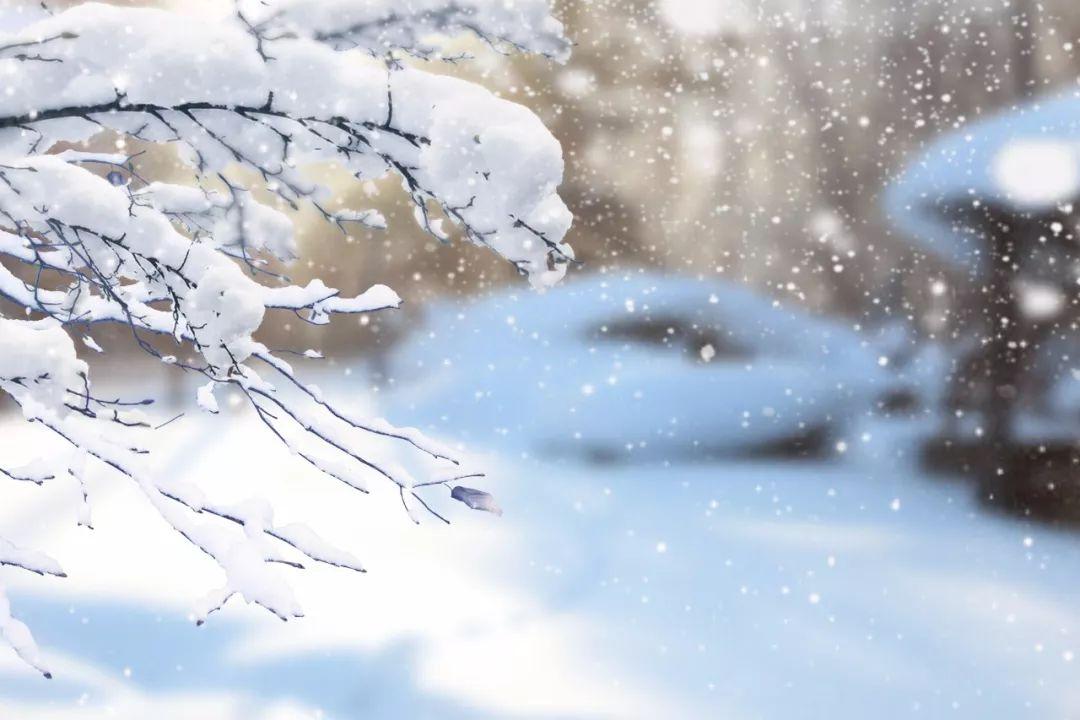 寒冬将至,万物冬藏