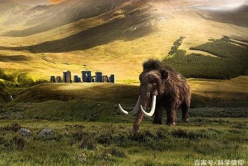 动物本应越来越大,现实却是越来越小,人类正在替代自然选择