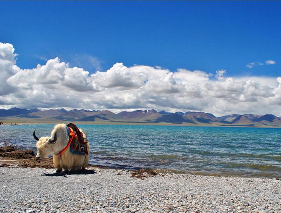 去西藏旅游的禁忌与注意事项,你需要知道这些