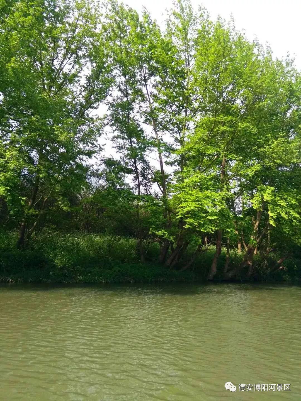 博阳河生态风景区