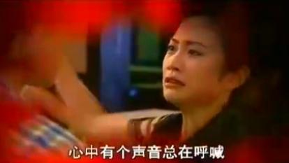 电视剧《永不瞑目》「陆毅 苏瑾 袁立 孙红雷」片尾「大结局」