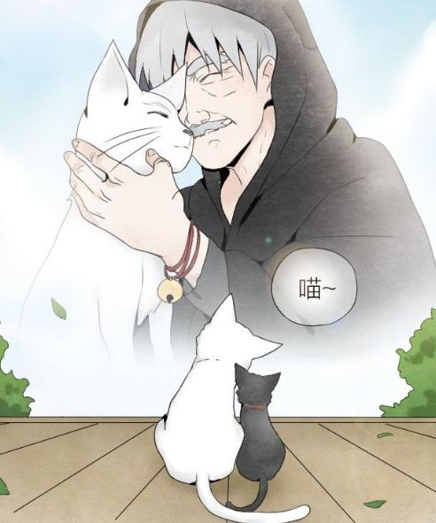 牛头不对马嘴:白猫与老爷爷,老爷爷变成黑猫了!