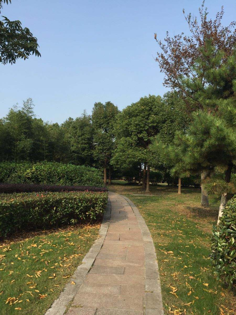 除了伊春五营森林公园,南通啬园,空气特别好的旅游