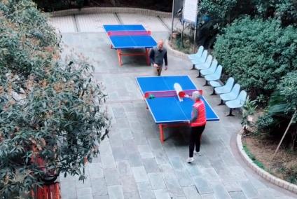 猫咪坐不住帮奶奶打乒乓球,本喵罩的女人,谁也不能欺负!