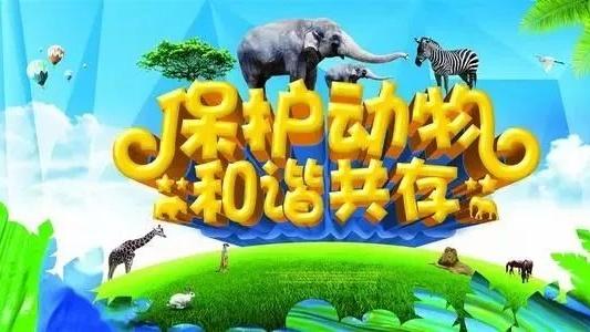 保护秦岭 | 数数看!陕西国家级重点保护野生动物有哪些?