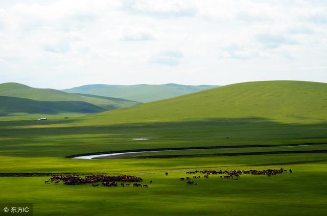 一生必去一次的地方,呼伦贝尔大草原旅行全攻略
