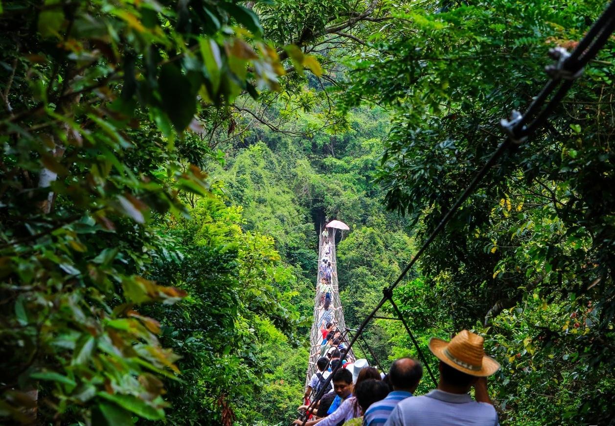 旅游:亚龙湾热带天堂森林公园,休闲观光养生度假好