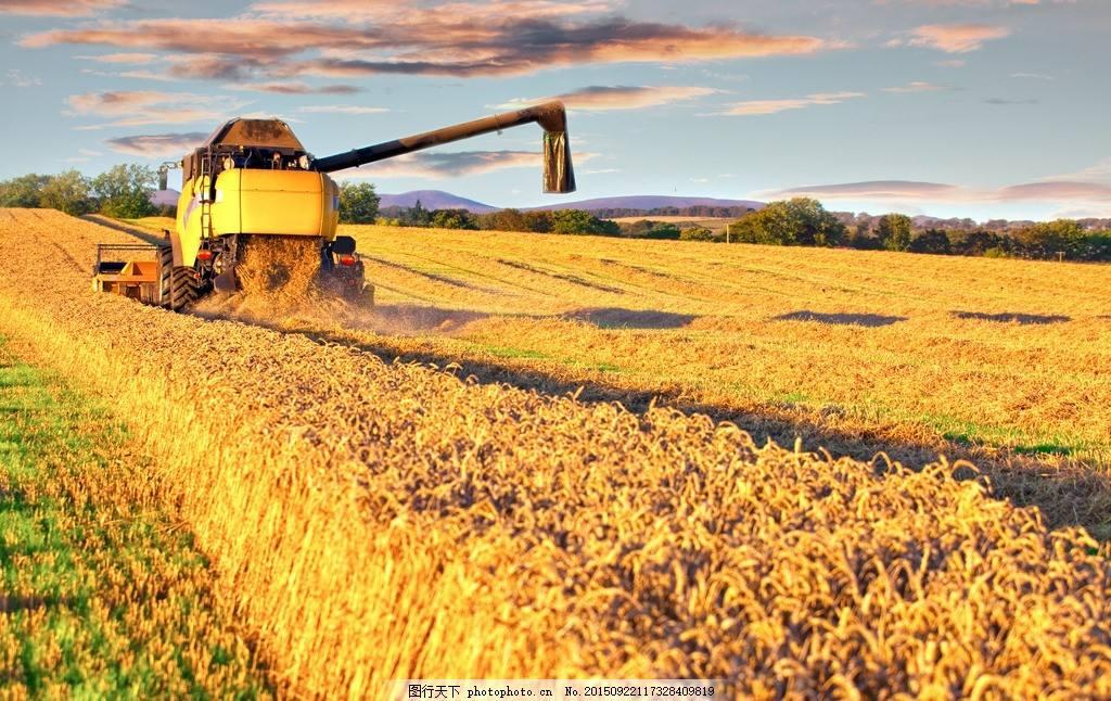 种地壁纸_30年后在农村种地的人会是大学生么?