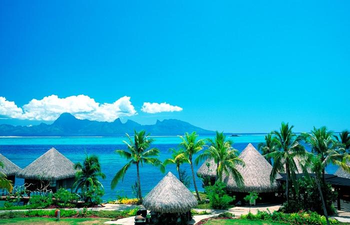 图中的海岛景致风光旖旎,看了让人感觉心情愉悦.