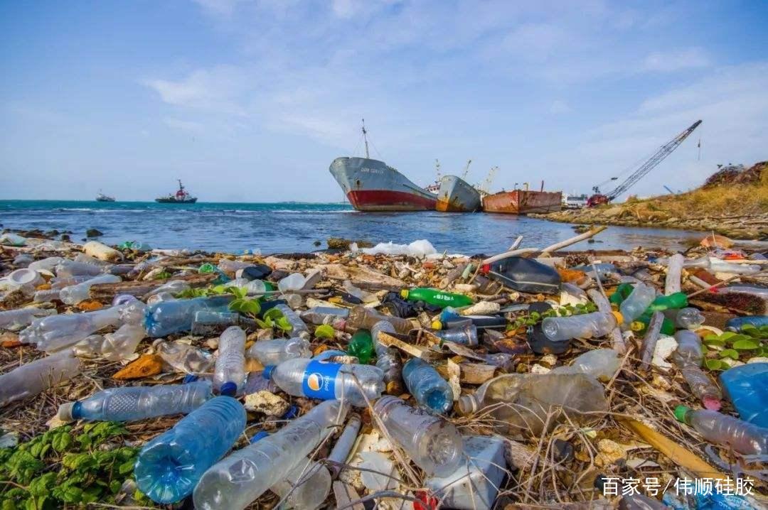 2019年欧美国家开始大力度禁止塑料产品使用