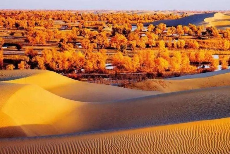 """世界第二大沙漠塔克拉玛干沙漠,被称为中国的""""死亡之海"""""""