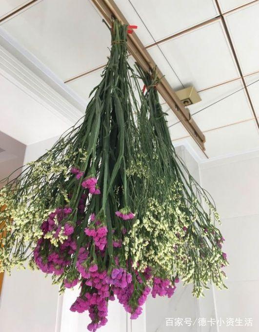 漂亮的干花,在这过程中,你还可以分开绑好,挂在墙壁上,充当一幅风景画