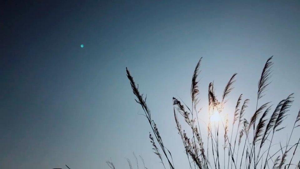 復雜的雜什么意思,復雜的事情簡單做,簡單的事情復雜做什么意思。