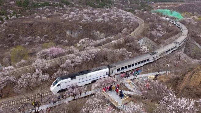 """来打卡!居庸关""""开往春天的列车""""已安排好"""