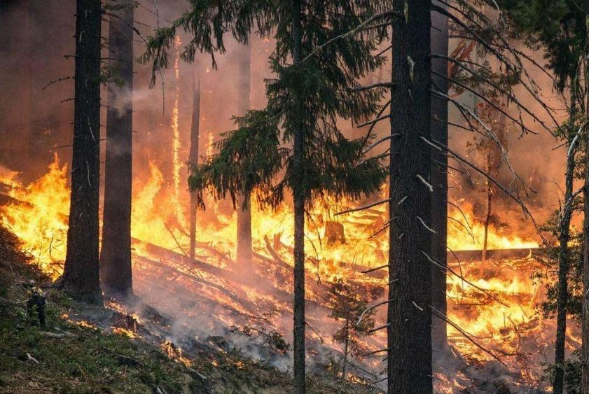 山西沁源发生森林火灾,随后北京密云也发生了森林火灾!