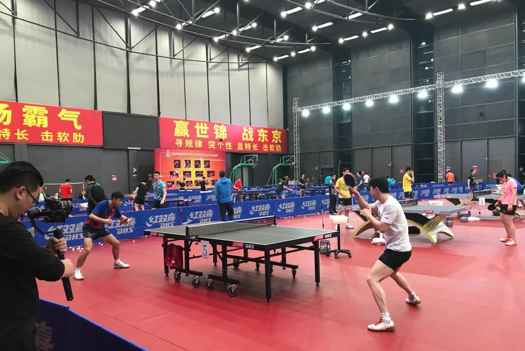国乒对手榜出炉!张本智和竟没占据首位,日本女乒5人集体上榜