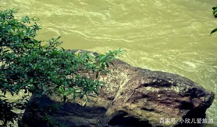 凤凰谷风景区,谷长5公里,远近闻名的生态旅游胜地