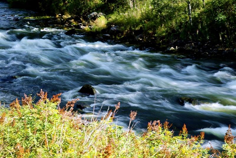 """世界上""""最爱国""""的河流,不流入大海,出国之后又折返回国?"""